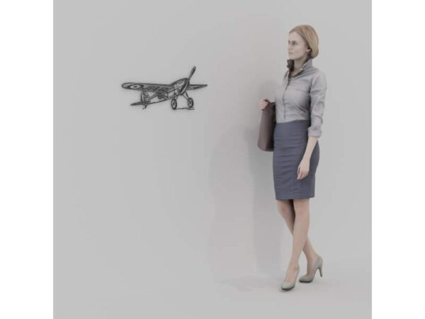 plane_1
